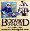 Boxwood Gulch Fishing Colorado