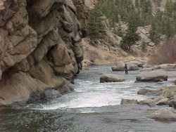 Colorado Fishing Network South Platte River Elevenmile