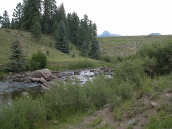 Williams Creek Tailwater Colorado