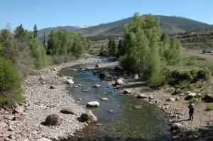 Colorado fishing network gold medal fishing on the blue river for Breckenridge co fishing