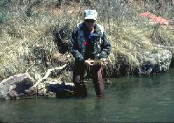 Marlowe fishing on Roaring Fork, Colorado