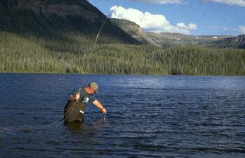 Catching a fish in the Flat Tops