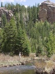 lost creek wilderness co fishing surveys
