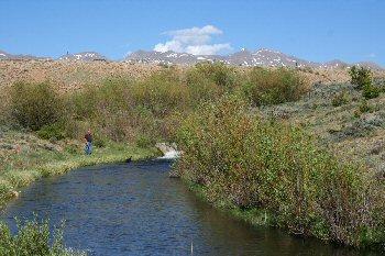 Colorado fishing network north park for Platte river michigan fishing