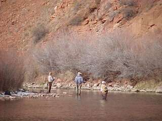 fly fishing fryingpan river Colorado