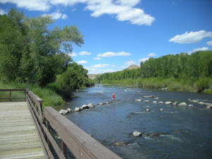 Rio Grande Colorado Fishing