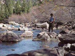 Colorado fishing network south boulder creek for Boulder creek fishing