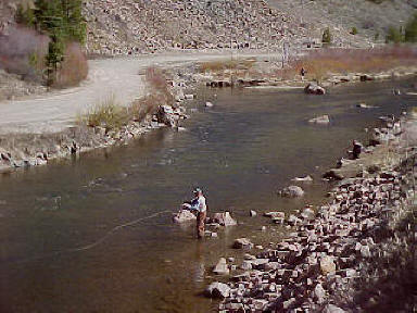 taylor river tailwater colorado