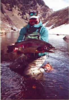 Taylor trout Colorado