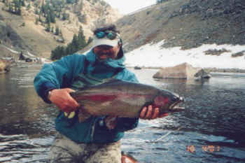 big Taylor Rainbow Colorado